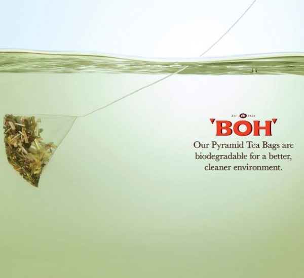 BOH Spa Infusions pyramid tea bags are biodegradable